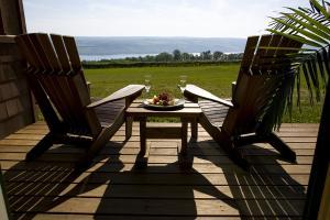 Luxury overlooking vineyards and Seneca Lake