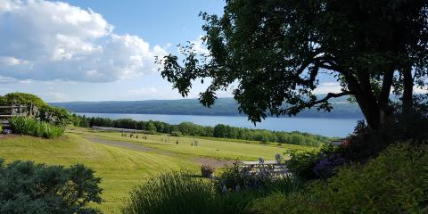 Vineyards and wineries on the Seneca Lake Wine Trail