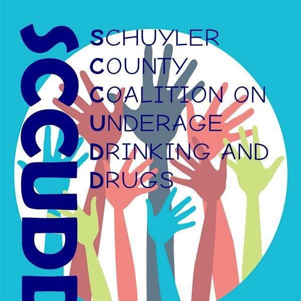 coalition and underage drinking Sudds -stop underage drinking/drugs- coalition, allen park 303 likes the sudds coalition works in several communities in the downriver area to prevent.