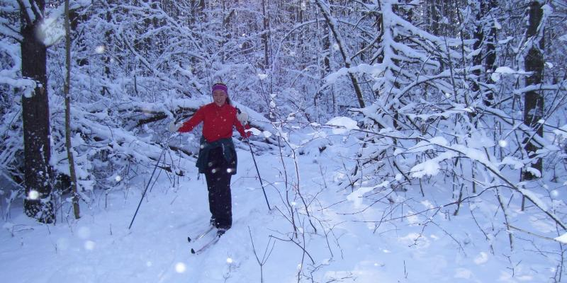 Cross country skiing in the Finger Lakes National Forest