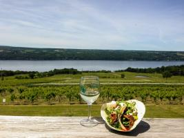 Stunning views overlooking Seneca Lake